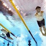 8月26日、激戦が続く水泳のベストショット。中国・鄭濤選手の力強い目!